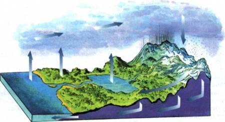 властивості води в газоподібному стані