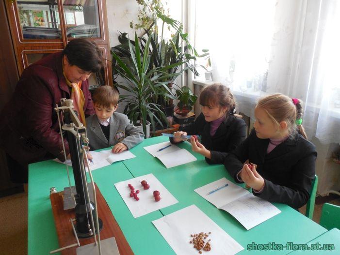Підготовка насіння до посіву